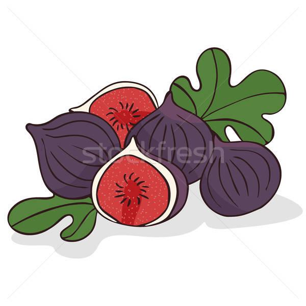 Сток-фото: зрелый · инжир · плодов · белый