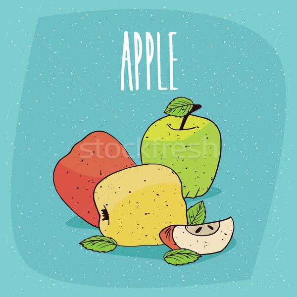 Izolált színes érett almák pici levelek Stock fotó © alexanderandariadna