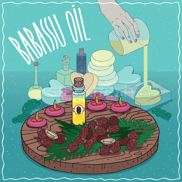 Babassu oil used for soap making Stock photo © alexanderandariadna