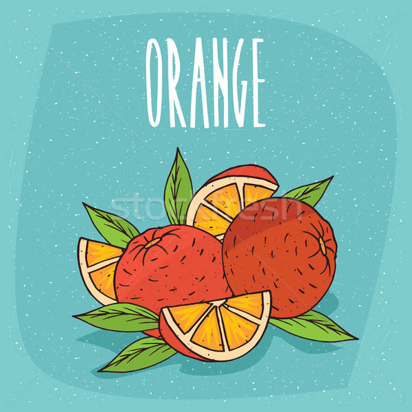 Isolated ripe oranges fruits whole and cut Stock photo © alexanderandariadna
