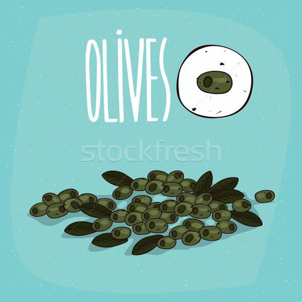 Set isolato impianto olive frutti erbe Foto d'archivio © alexanderandariadna