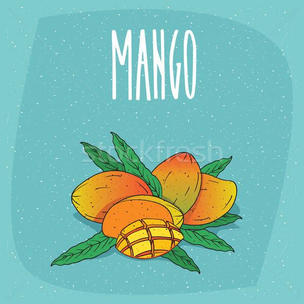 Isolated ripe mango fruits whole and cut Stock photo © alexanderandariadna