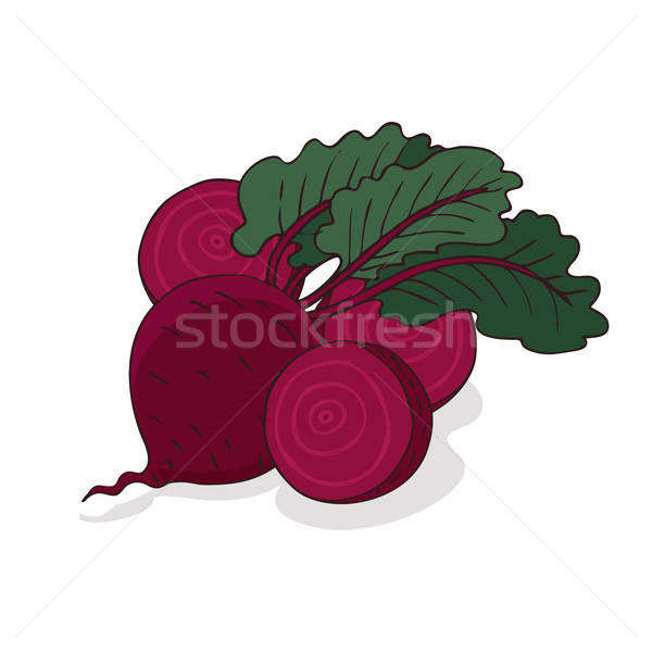 Isolate ripe beet root vegetable Stock photo © alexanderandariadna