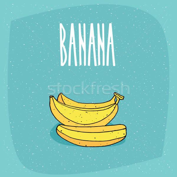 Stockfoto: Geïsoleerd · rijp · geheel · bananen · vruchten · mooie