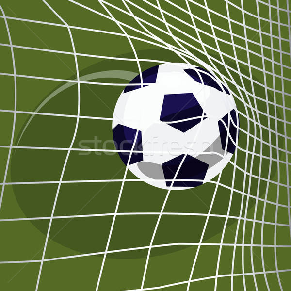 Soccer ball falls into net of goal Stock photo © alexanderandariadna