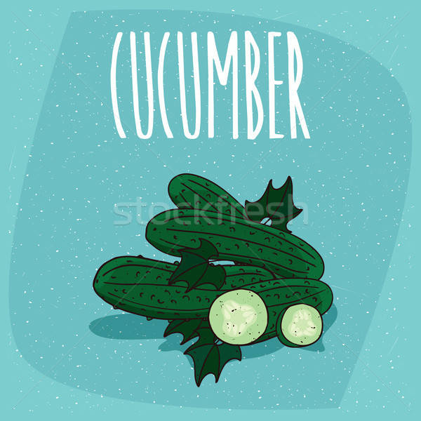 Isolated fruits cucumber vegetable whole and cut Stock photo © alexanderandariadna