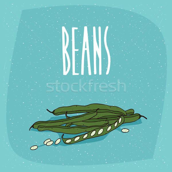 孤立した 野菜 ポッド 果物 豆 ストックフォト © alexanderandariadna