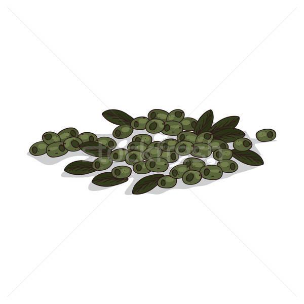 Isolated clipart Olives Stock photo © alexanderandariadna