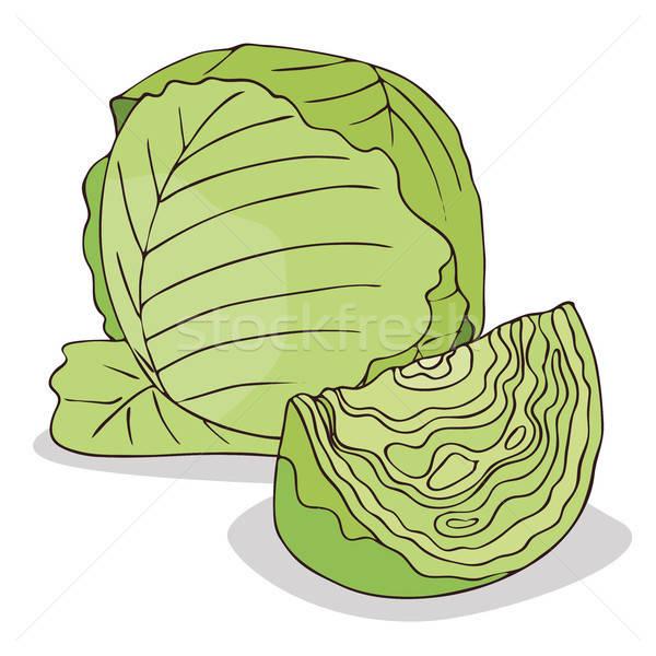 Isolate green cabbage vegetable Stock photo © alexanderandariadna