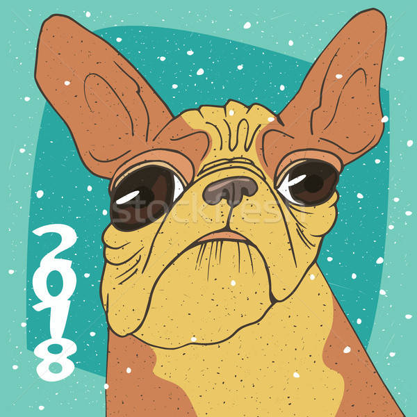 Belachelijk portret ras frans bulldog grappig Stockfoto © alexanderandariadna