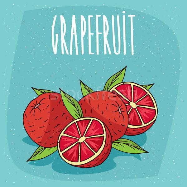 Isolated several ripe grapefruit fruits Stock photo © alexanderandariadna