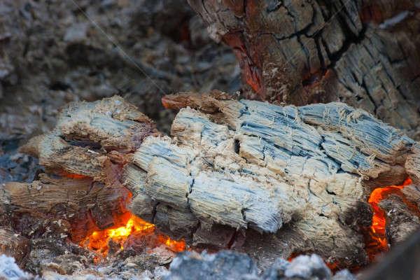 Chaud barbecue cuisson cheminée été Photo stock © alexandkz