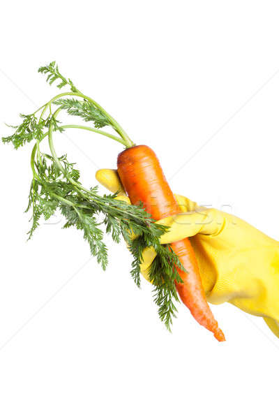 gloved hand holding a carrot isolated on white background Stock photo © alexandkz