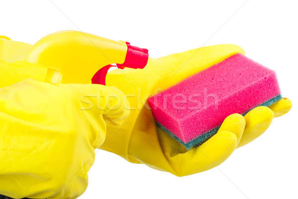 Hands wearing rubber gloves holding a sponge and cleaning spray bottle isolated on white Stock photo © alexandkz
