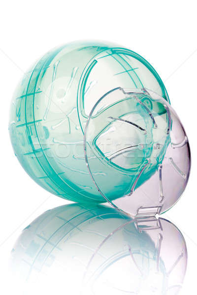 Hamster ball isolated Stock photo © alexandkz