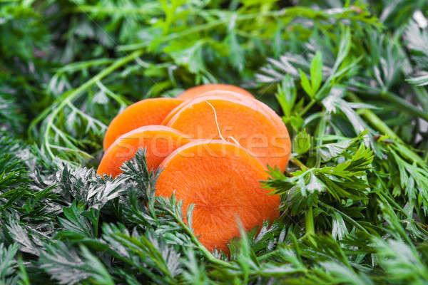 Court carotte vert alimentaire feuille fond Photo stock © alexandkz