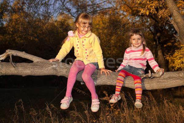 Klein kinderen klim boom familie meisje Stockfoto © alexandkz
