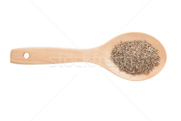 Fennel and wooden spoon  isolated on white background Stock photo © alexandkz