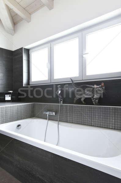 Bathroom with gray tiles, elegant and modern Stock photo © alexandre_zveiger