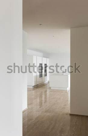 Interni passaggio view bella moderno casa Foto d'archivio © alexandre_zveiger