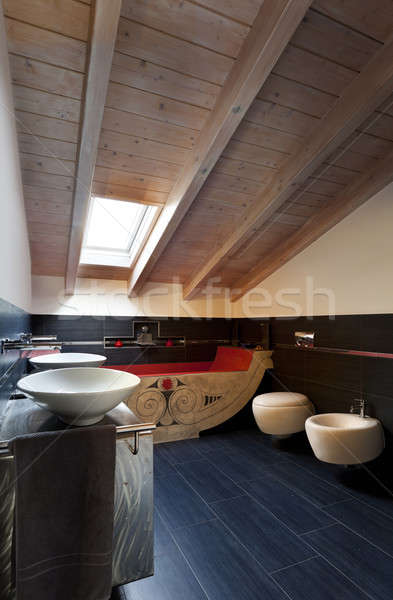 Belső új padlás fürdőszoba kisebbségi fürdőkád Stock fotó © alexandre_zveiger