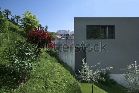 Nowoczesny styl willi nowoczesne domu charakter Zdjęcia stock © alexandre_zveiger