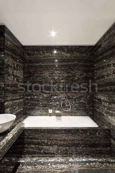 Rahat banyo modern ev görmek Stok fotoğraf © alexandre_zveiger