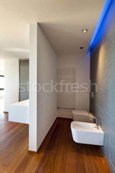új belsőépítészet lakás modern wc otthon Stock fotó © alexandre_zveiger