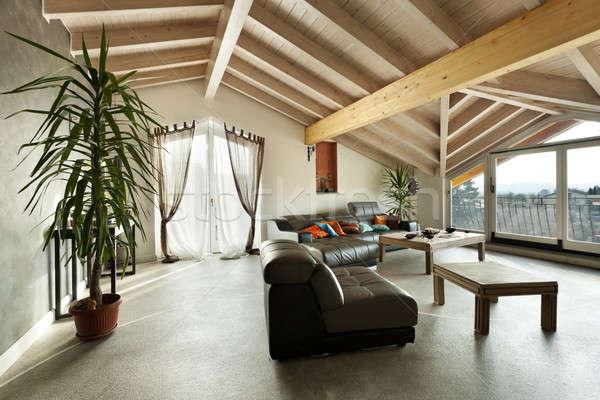 Iç yeni çatı katı etnik mobilya oturma odası Stok fotoğraf © alexandre_zveiger