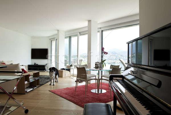 Nappali modern ház kutya otthon zongora Stock fotó © alexandre_zveiger