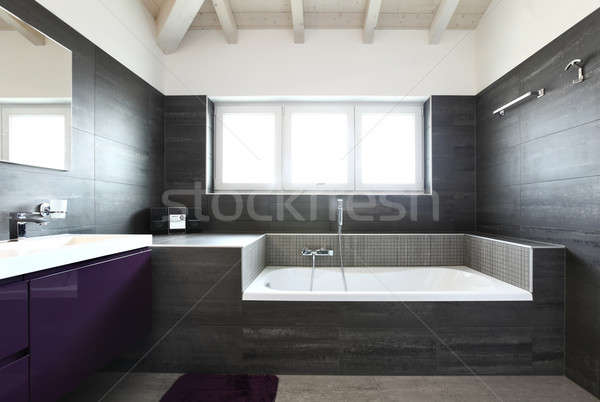 Badkamer grijs tegels elegante moderne mooie Stockfoto © alexandre_zveiger