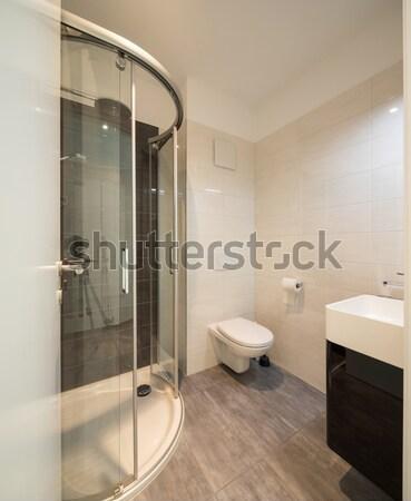 Belső modern lakás kortárs ház fürdőszoba Stock fotó © alexandre_zveiger