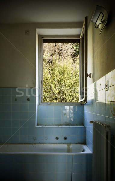 Elhagyatott ház építészet épület öreg fürdőszoba Stock fotó © alexandre_zveiger