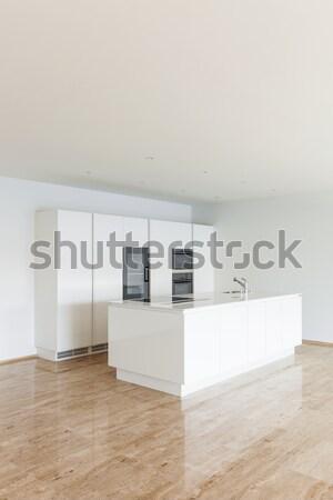 美しい 家 現代 キッチン 空っぽ アパート ストックフォト © alexandre_zveiger