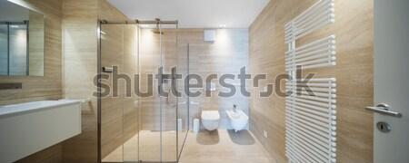 Interior casa pasaje vista arquitectura amplio Foto stock © alexandre_zveiger