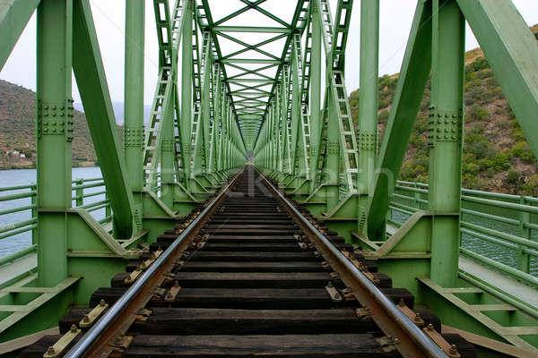 rail train on a bridge Stock photo © alexandrenunes