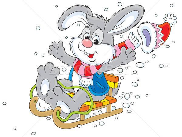 Rabbit sledding Stock photo © AlexBannykh
