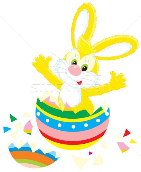 Húsvéti nyuszi színes tojás vektor clipart ki színes Stock fotó © AlexBannykh