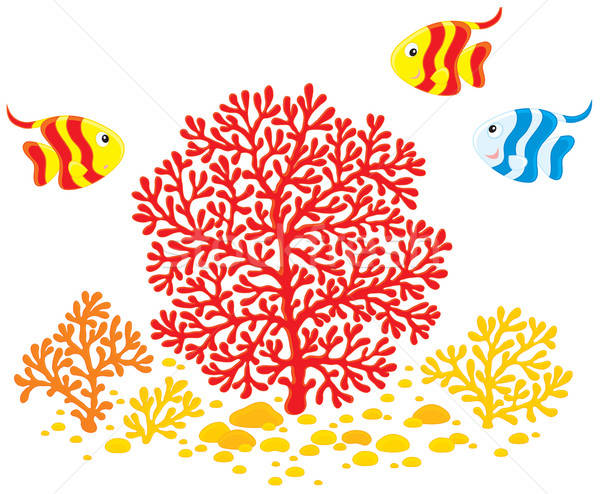 Corals and fishes Stock photo © AlexBannykh