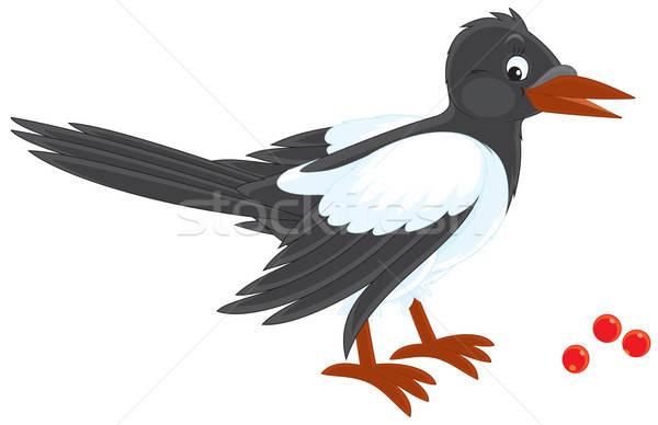 ベクトル クリップアート 羽 長い 尾 自然 ストックフォト © AlexBannykh