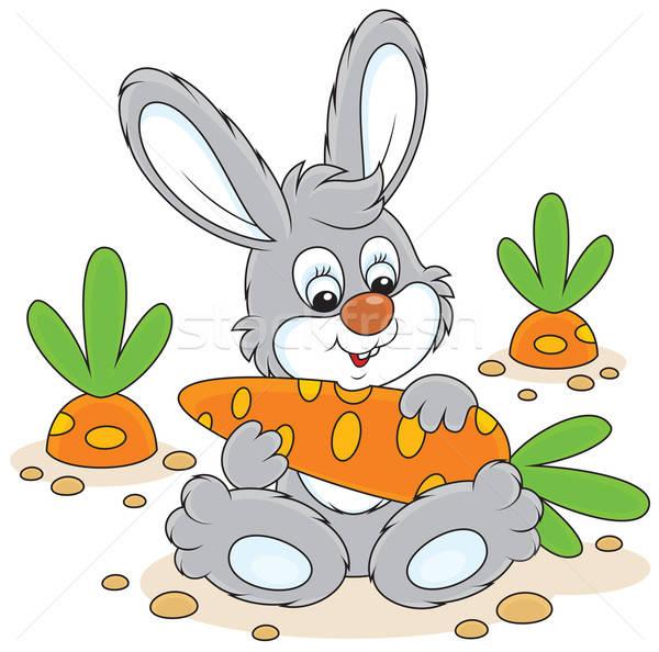 Bunny with a carrot Stock photo © AlexBannykh