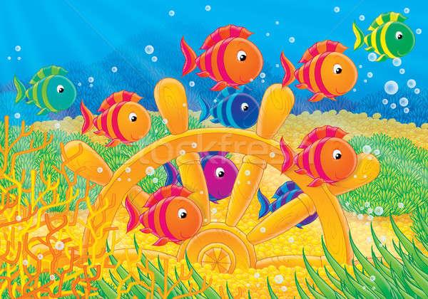 коралловые руль красочный плаванию рыбы Сток-фото © AlexBannykh