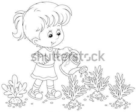 Girl in a vegetable garden Stock photo © AlexBannykh