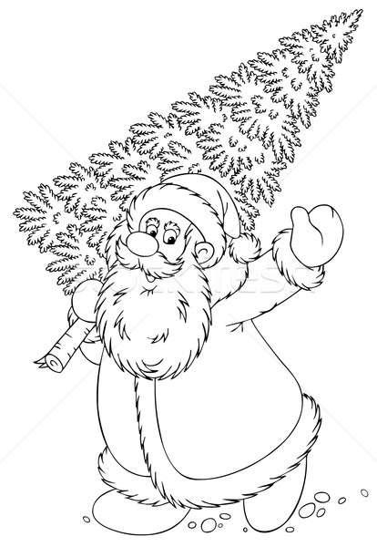 Santa carrying a Christmas tree Stock photo © AlexBannykh