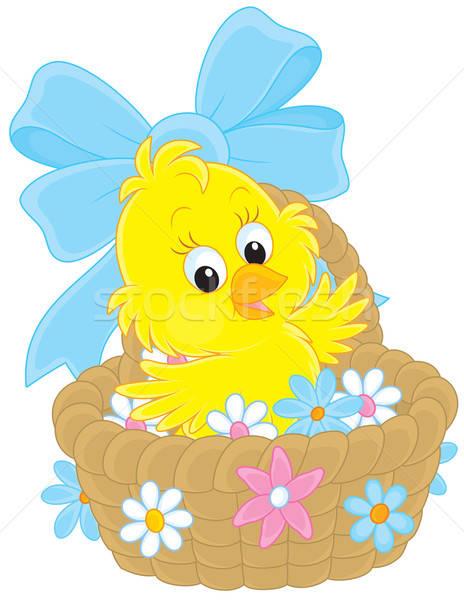 Wielkanoc chick mały żółty kurczaka posiedzenia Zdjęcia stock © AlexBannykh