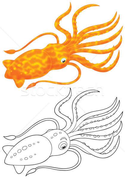 Cuttlefish Stock photo © AlexBannykh