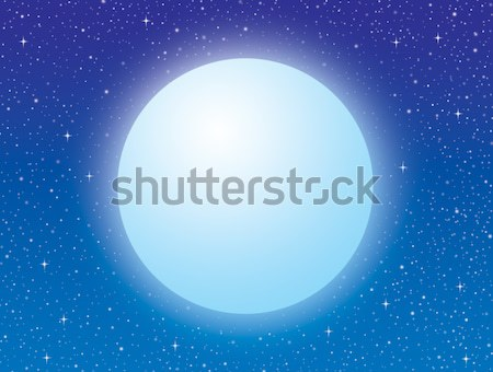 Moonlit night Stock photo © AlexBannykh