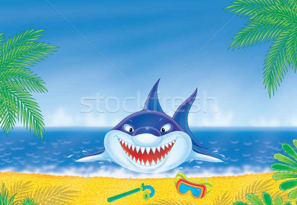 ストックフォト: 白 · サメ · ビーチ · 外に · 水