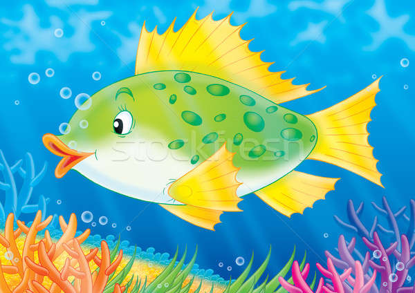 fish swimming in clip art animations n - 600×424