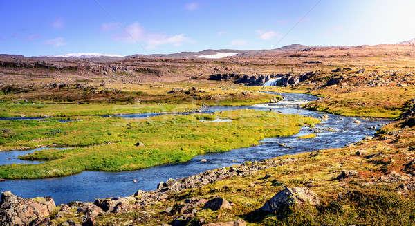 Icelandic landscape Stock photo © alexeys